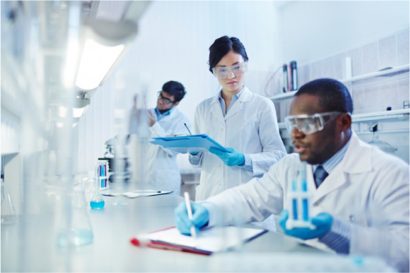 Toxicology risk Assessments